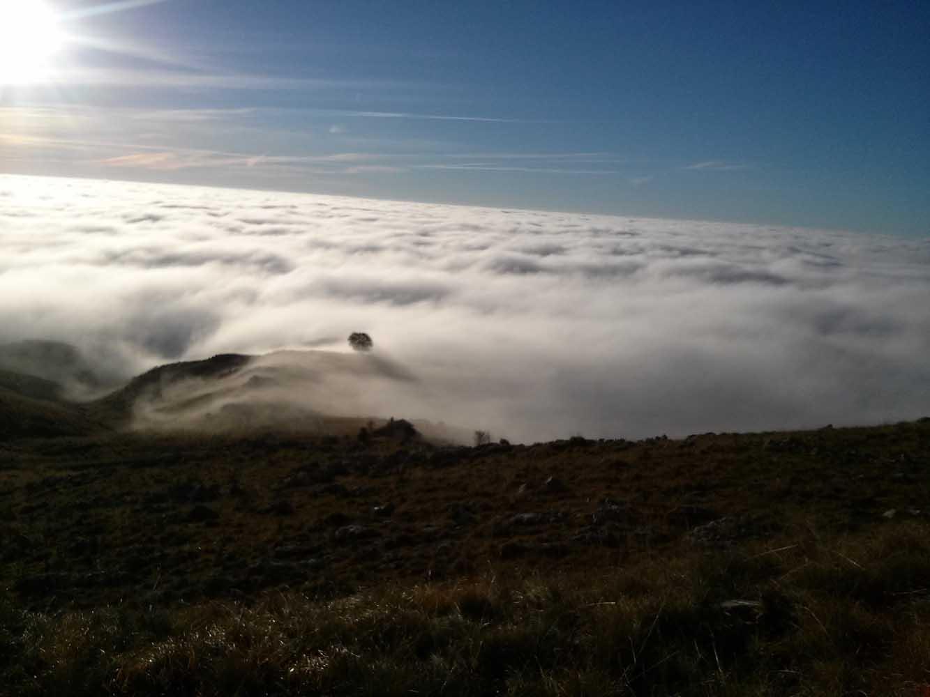 Nebbia-pizzoc