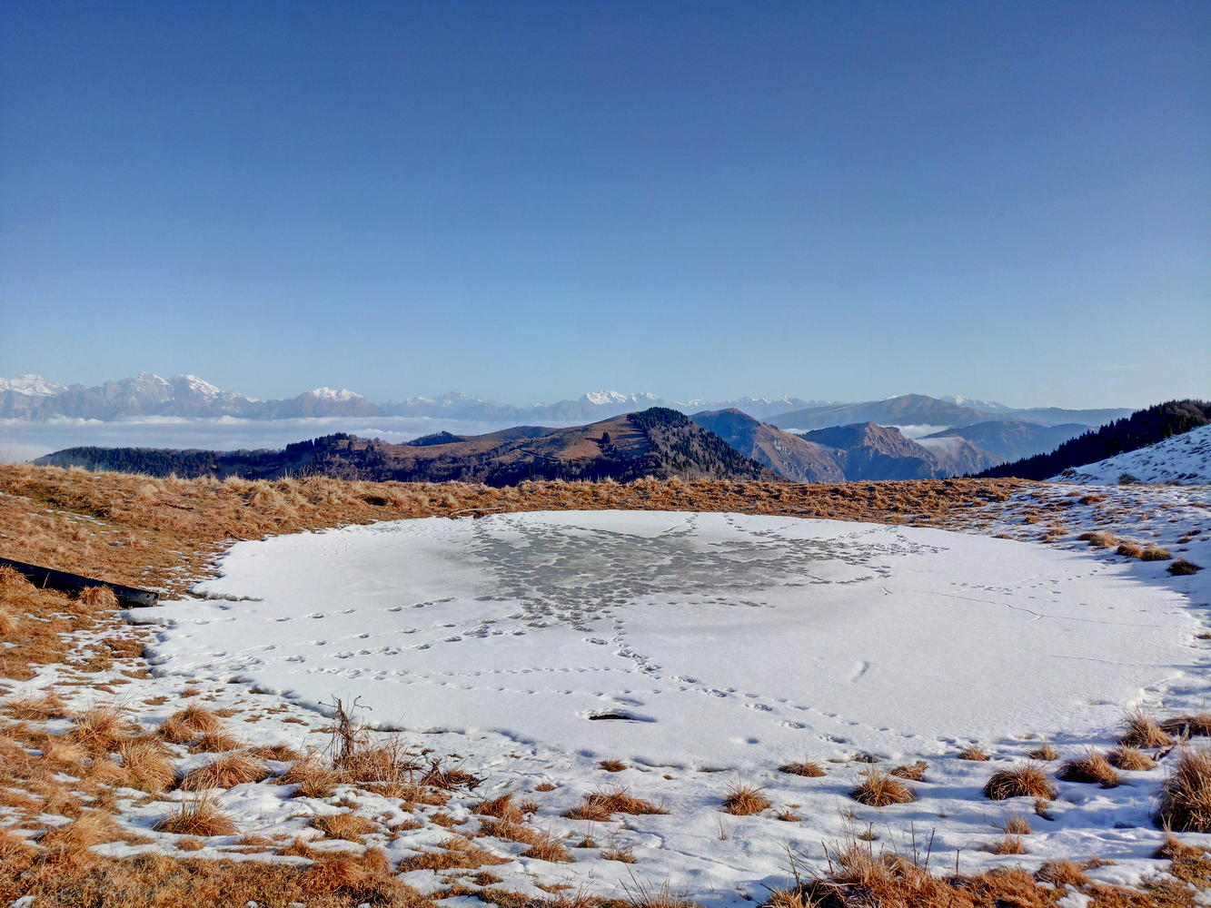 Lama-ghiacciata
