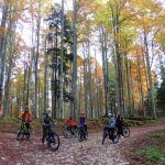 tour-bici-elettrica-foliage-cansiglio