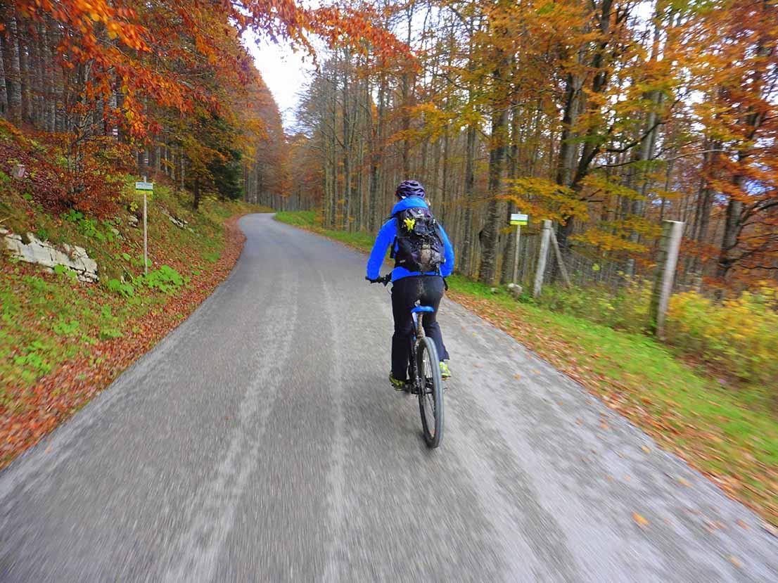tour-bici-elettrica-cansiglio-andrea-lucchi